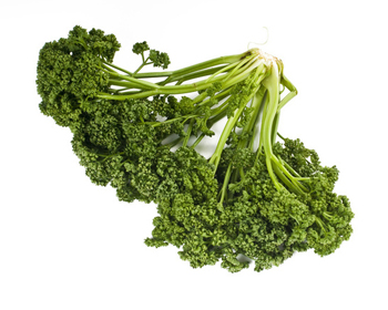 parsley meaning in bengali